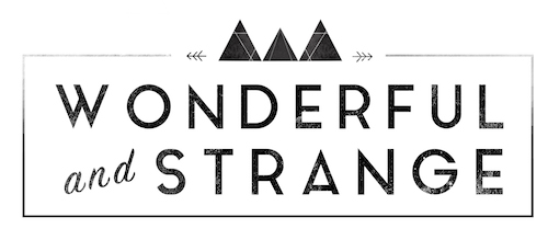 wonderful and strange // scotland wedding photographer logo
